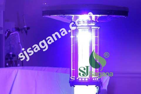 Dạng đèn tia UV